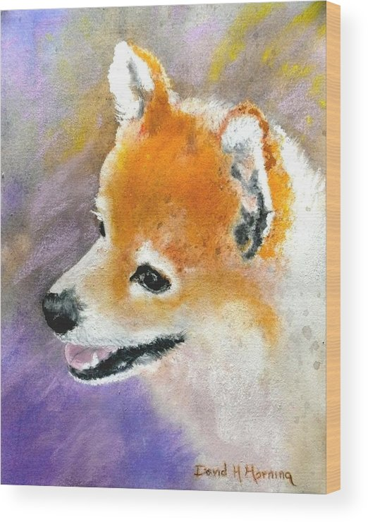 Pomeranian Wood Print featuring the painting Nevada by David Horning