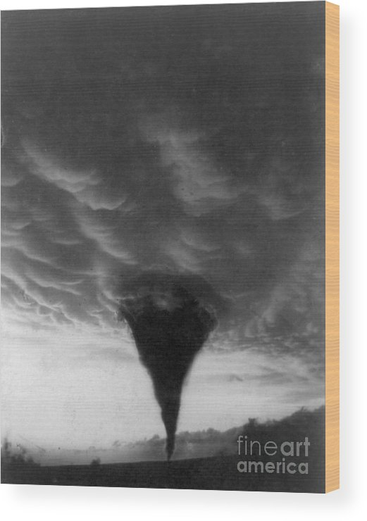 1898 Wood Print featuring the photograph Oklahoma Tornado, C1898 - To License For Professional Use Visit Granger.com by Granger