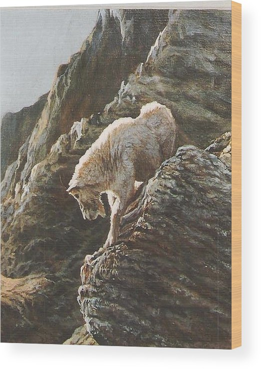Goat Wood Print featuring the painting Rocky Mountain Goat by Steve Greco