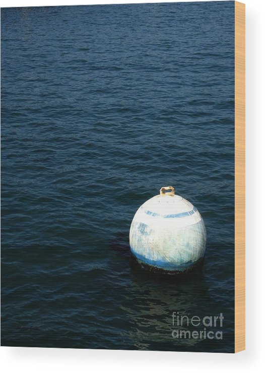 Seascape Wood Print featuring the photograph Sit And Bounce by Shelley Jones