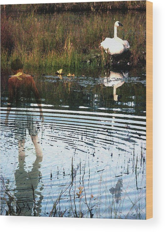 Swan Wood Print featuring the photograph Summer Dreams by Perri Kelly