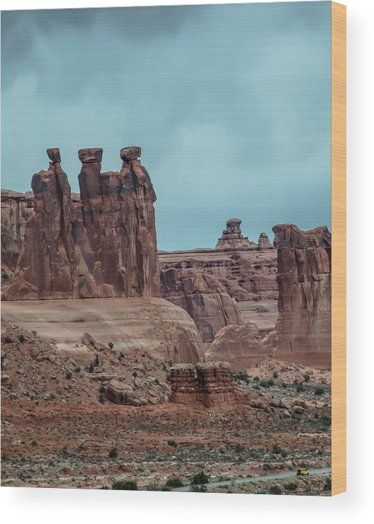 Nature Wood Print featuring the photograph Three Sisters by Steve Marler