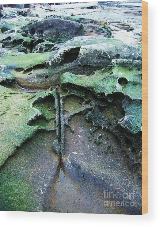 Photograph Rock Beach Ocean Wood Print featuring the photograph Time Washed Out by Seon-Jeong Kim