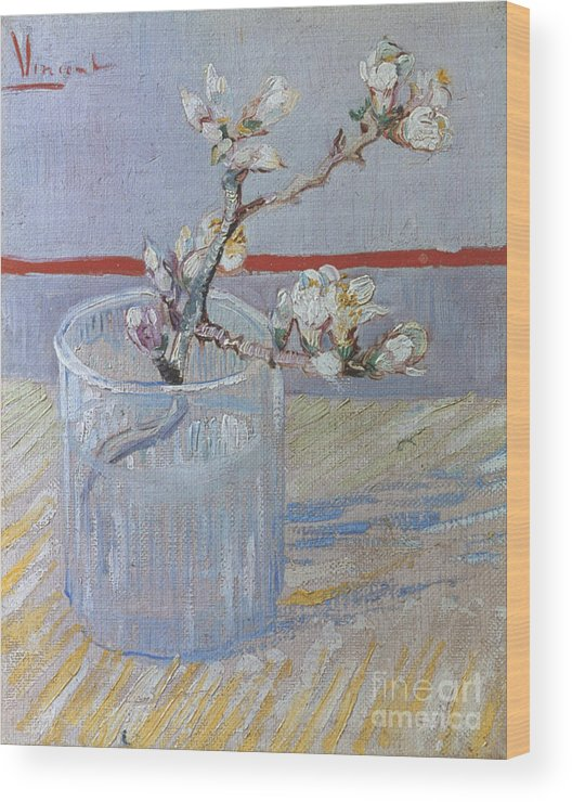 1888 Wood Print featuring the photograph Van Gogh: Branch, 1888 by Granger