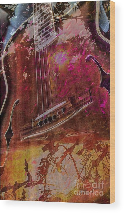 Acoustic Wood Print featuring the photograph A Tune In The Woods By Steven Langston by Steven Lebron Langston