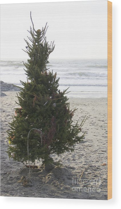 Christmas Tree Wood Print featuring the photograph Christmas On The Beach 1 by Michael Mooney