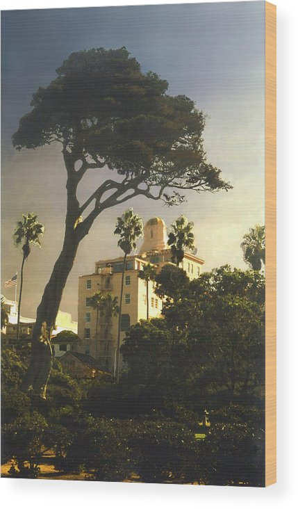 Landscape Wood Print featuring the photograph Hotel California- La Jolla by Steve Karol