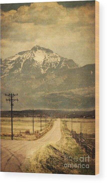 Road Wood Print featuring the photograph Road To The Mountains by Jill Battaglia