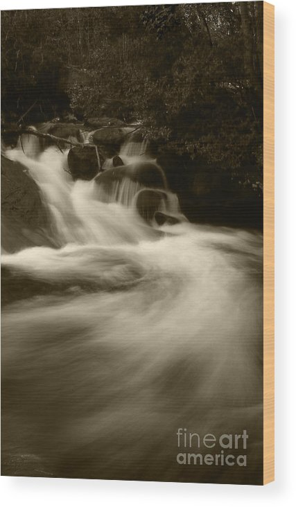 Landscape Wood Print featuring the photograph Alberta Falls by Timothy Johnson