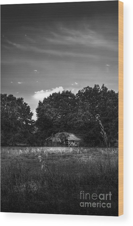 Barns Wood Print featuring the photograph Barn And Palmetto-bw by Marvin Spates