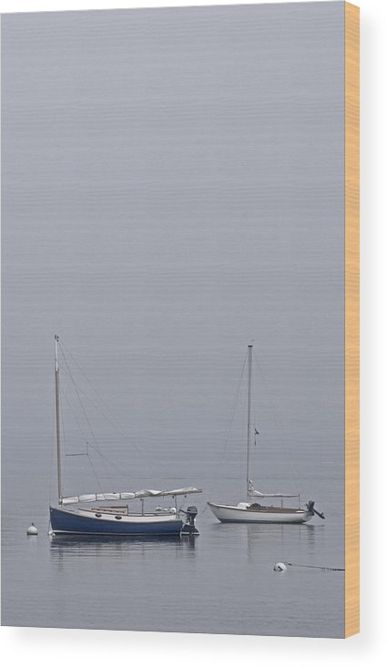 Boat Wood Print featuring the photograph Catboat And Sloop - Nantucket Harbor by Henry Krauzyk