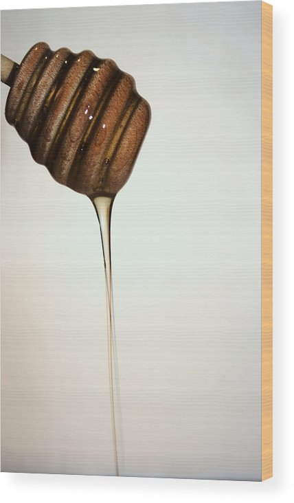 Honey Wood Print featuring the photograph Honey by Robin Lynne Schwind