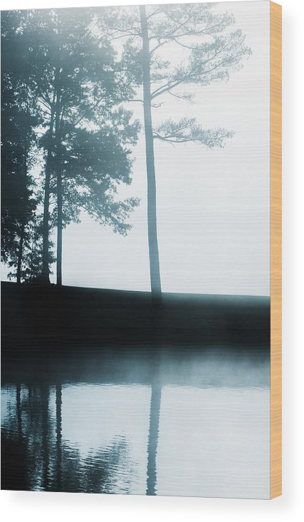 Wood Print featuring the photograph Morning Fog by Parker Cunningham