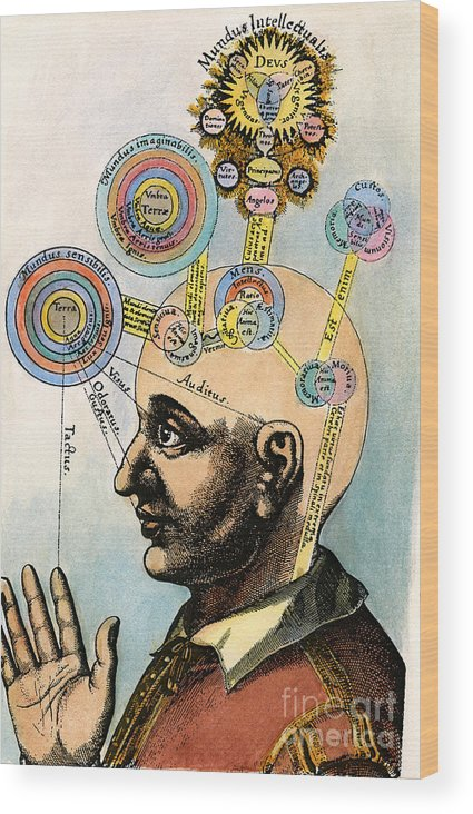 Brain Wood Print featuring the drawing Robert Fludd, 1574-1637 by Granger