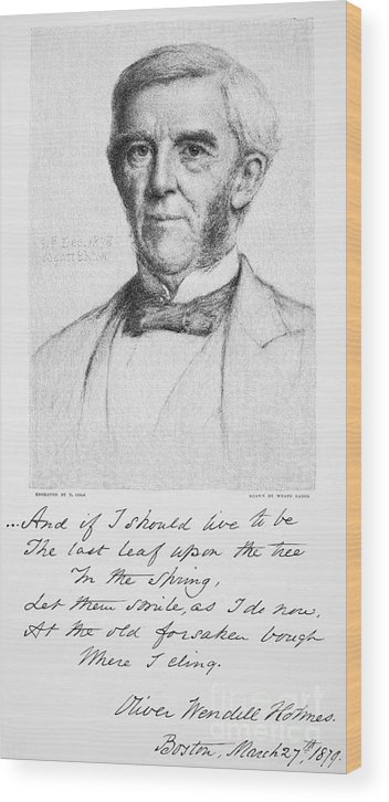 1879 Wood Print featuring the photograph Oliver Wendell Holmes by Granger