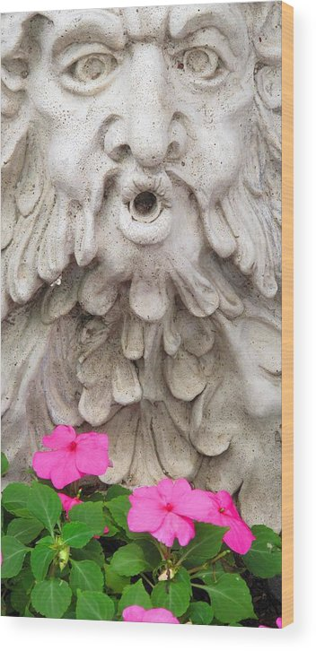 Statue Wood Print featuring the photograph Flower Blower by Ian MacDonald