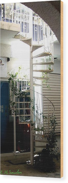 Plant Wood Print featuring the photograph White Stairs In The Sun by Elise Samuelson