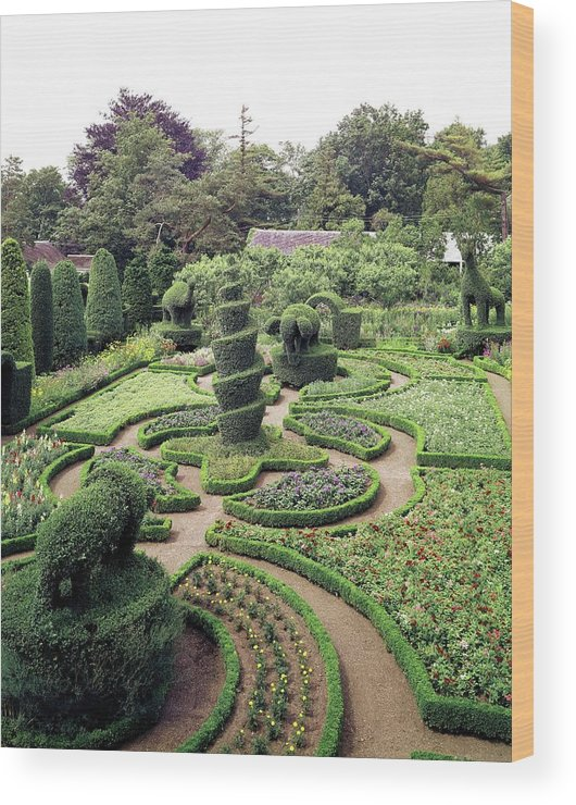 Exterior Wood Print featuring the photograph An Ornamental Garden by Tom Leonard
