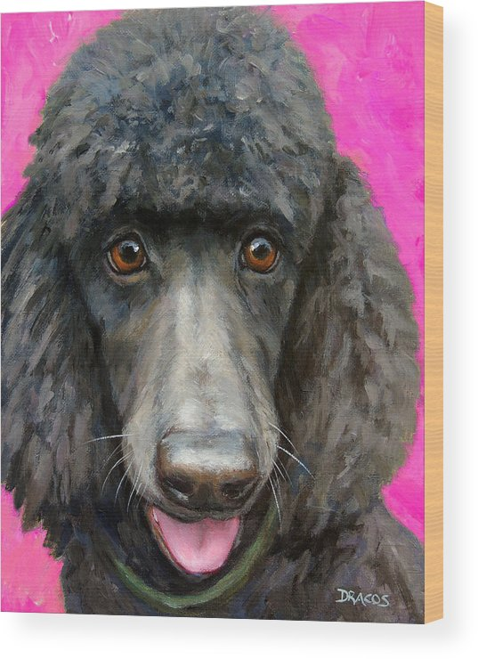 Poodle Wood Print featuring the painting Black Poodle On Hot Pink by Dottie Dracos