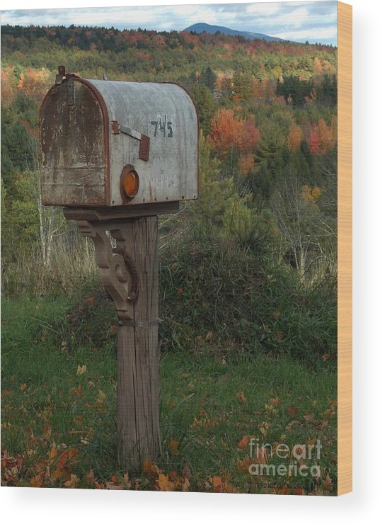 Fall Wood Print featuring the photograph Country Mail Box by Donna Cavanaugh