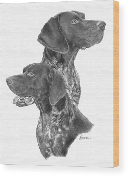 Pencil Drawing Print Wood Print featuring the drawing German Short-hair Pointer by Joe Olivares