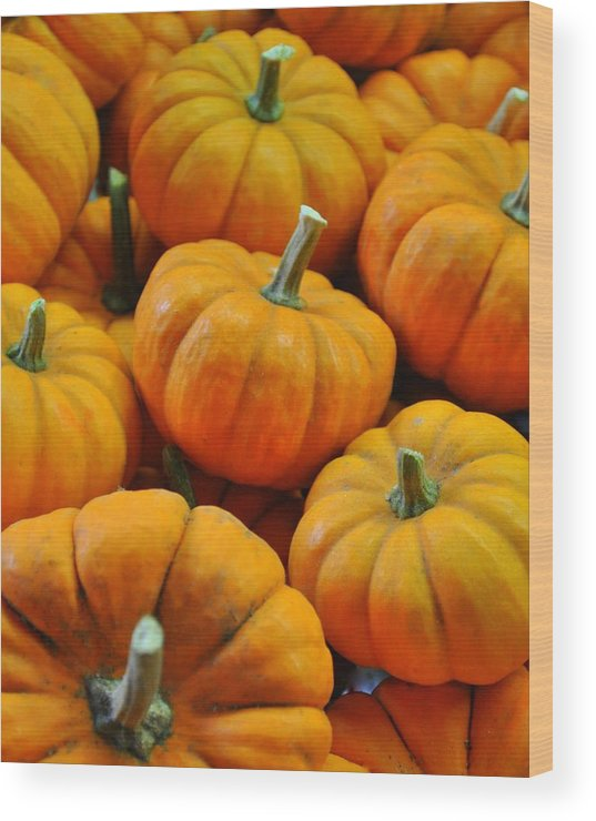 Pumpkins Wood Print featuring the photograph Pumpkins by Jeff Cook