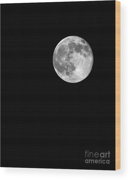 Supermoon July 12 2014 Wood Print featuring the photograph Supermoon July 12 2014 by Jemmy Archer