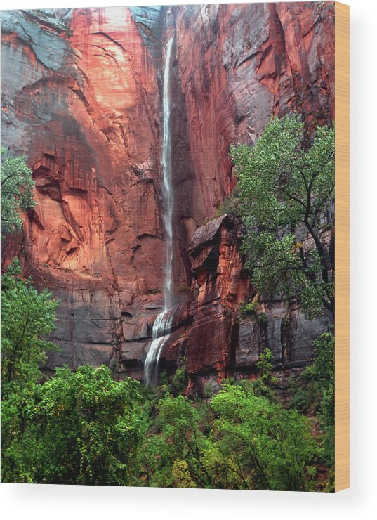 Zion Wood Print featuring the photograph Temple Of Sinawava by David Yunker