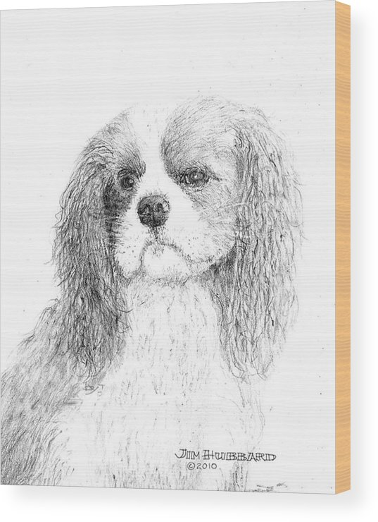 Dog Wood Print featuring the drawing Cavalier King Charles Spaniel by Jim Hubbard