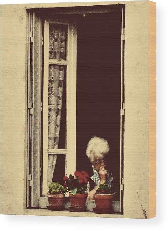 France Wood Print featuring the photograph Evening Reading by D Cochener