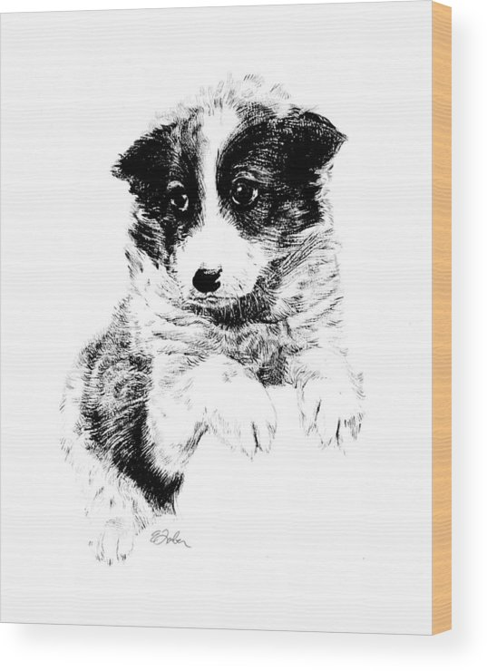 Puppy  Puppydog  Doggie  Dog  Pet Penandink  Petdog  Mutt Wood Print featuring the drawing Miss Maggie by Edward Farber