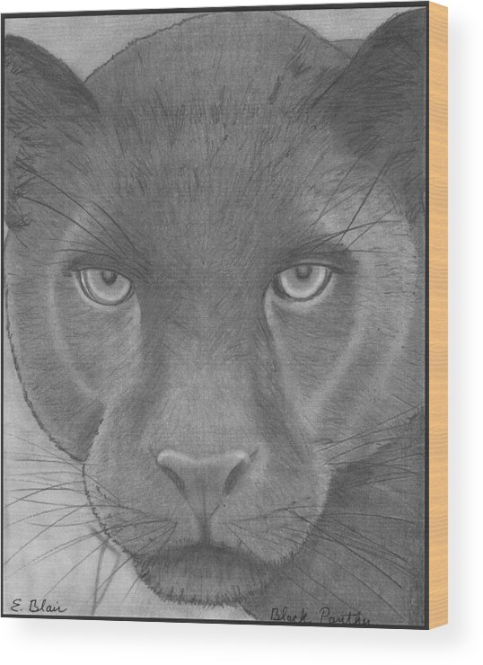 Wildlife Wood Print featuring the drawing black Panther by Eileen Blair