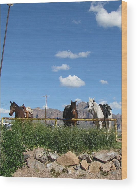 Landscape Wood Print featuring the photograph Blue Sky In Arizona by Gloria Byler