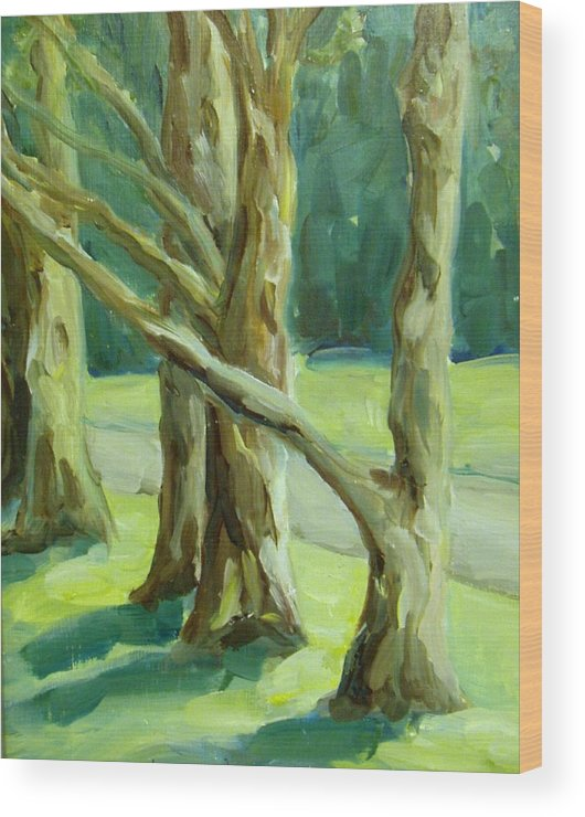 Trees Wood Print featuring the painting Cedars In Woodward Park by Linda Vespasian