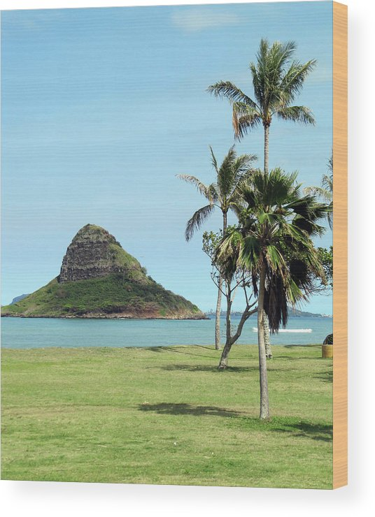 Hawaii Wood Print featuring the photograph Chinaman's Hat by Shannon Pearson