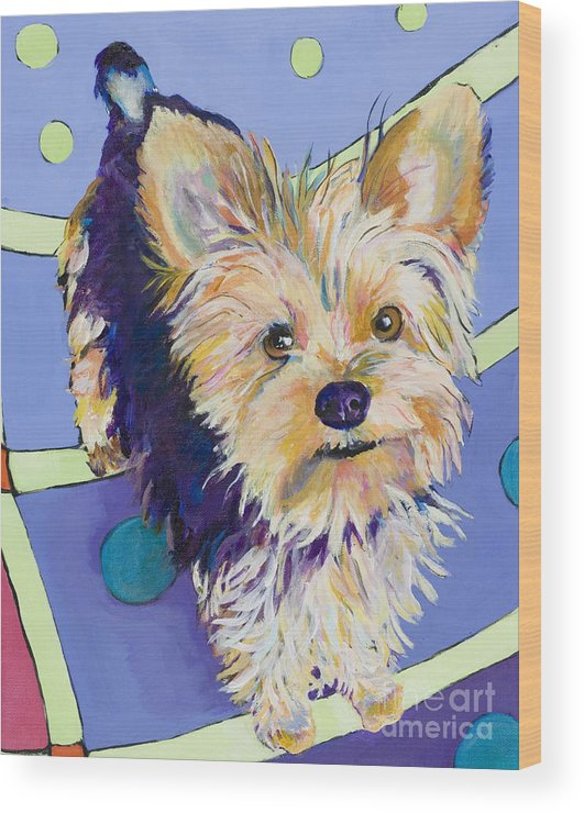Pet Portraits Wood Print featuring the painting Claire by Pat Saunders-White