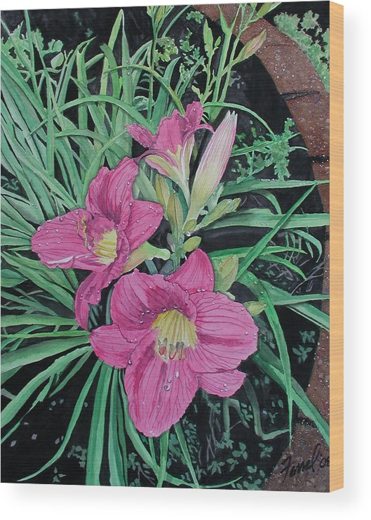Day Lily Wood Print featuring the painting Day Llily by Ferrel Cordle
