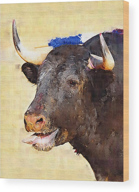Matador Wood Print featuring the photograph Fighting Bull by Clarence Alford