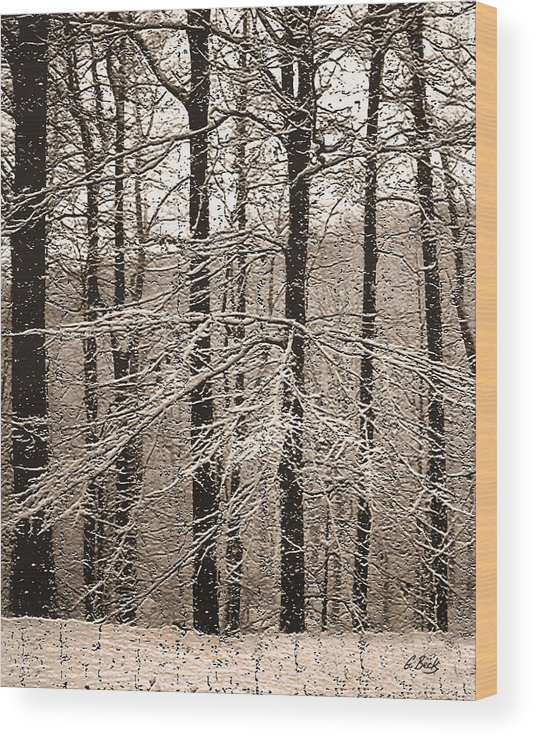 Winter Landscape Oak Trees Snow Snowy Forest Rural Country Woods Gordon Beck Art Wood Print featuring the photograph First Snow by Gordon Beck