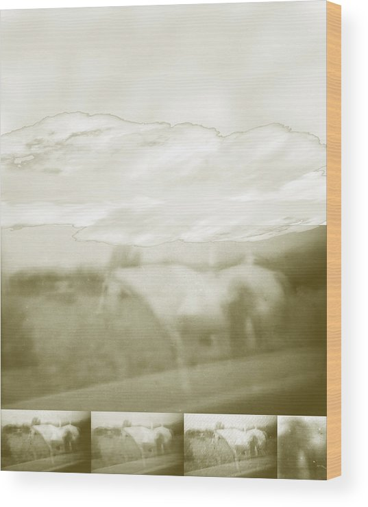 Colorado Wood Print featuring the digital art Ghost Horse Colorado by Ann Tracy