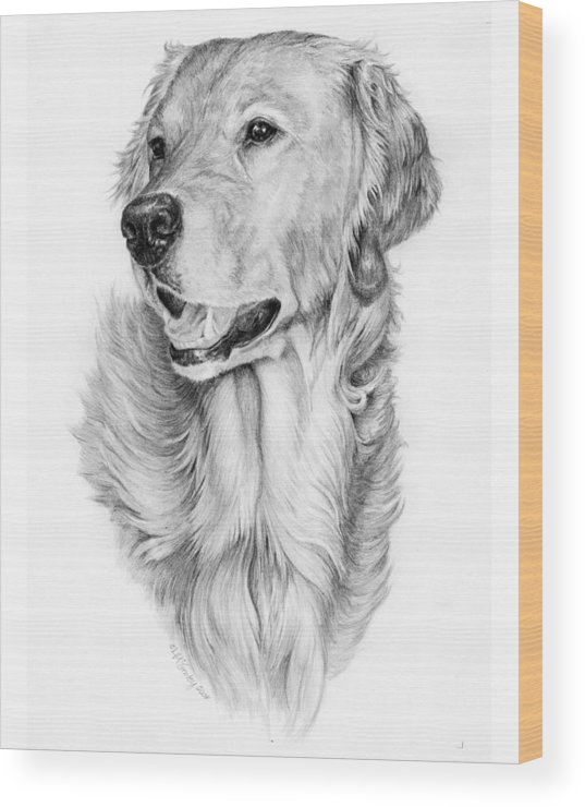 Dog Wood Print featuring the drawing Ginger by Laurie McGinley