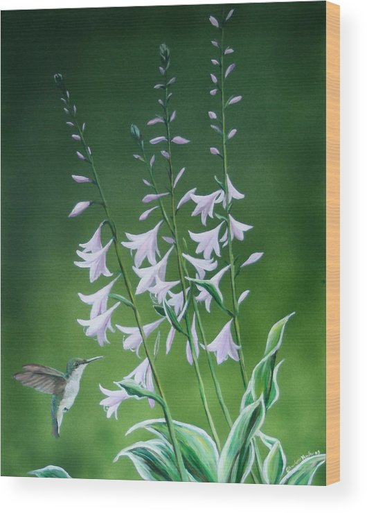 Bird Wood Print featuring the painting Hummingbird by Charlotte Yealey