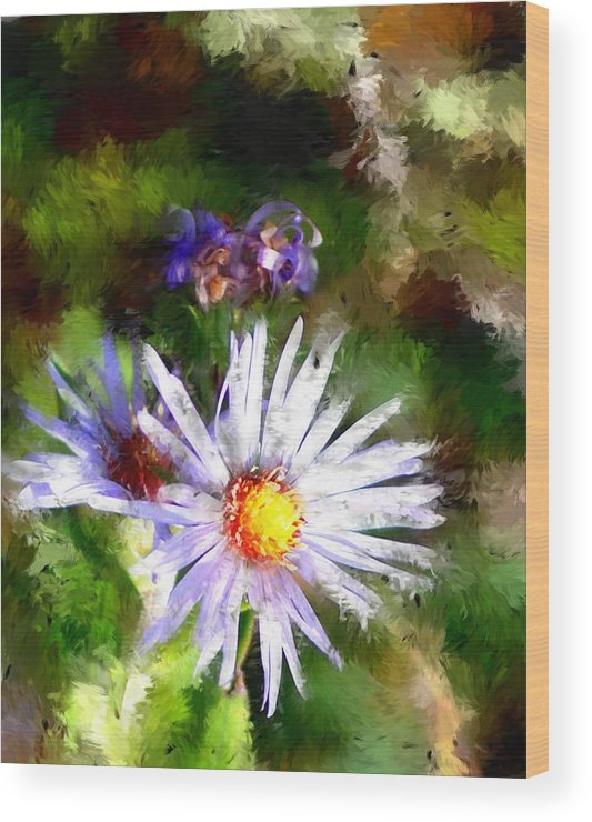 Flower Wood Print featuring the photograph Last Rose Of Summer by David Lane