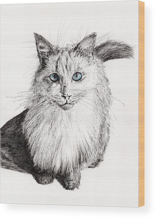 Cat Wood Print featuring the painting Monty by Vincent Alexander Booth