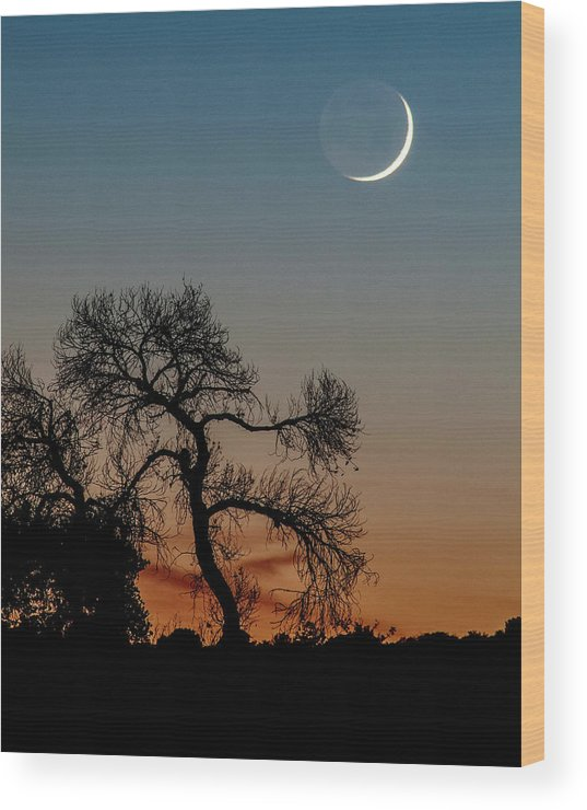 Nature Wood Print featuring the photograph New Moon At Beaver Creek, Arizona, I by Dave Wilson