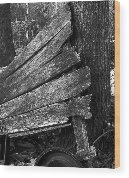 Ansel Adams Wood Print featuring the photograph Nextdoorolddoor by Curtis J Neeley Jr