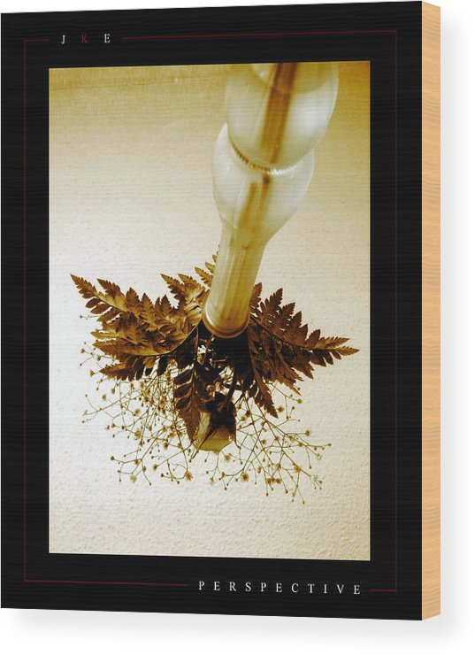 Flower Wood Print featuring the photograph Perspective by Jonathan Ellis Keys