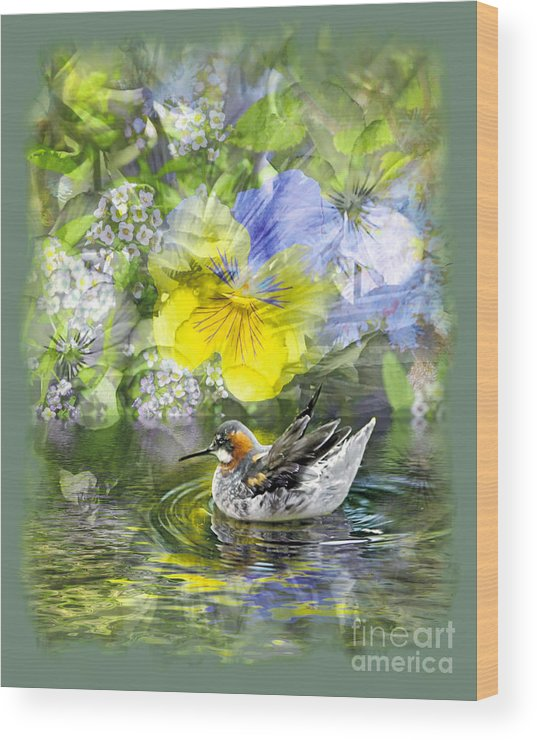 Floral Wood Print featuring the photograph Pintail Pond by Chuck Brittenham