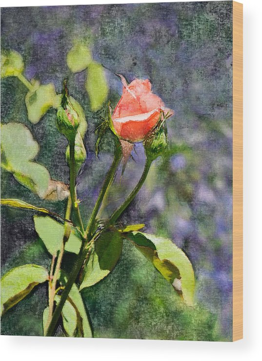 Rose Wood Print featuring the digital art Rose Elegance Art by Sherry Curry