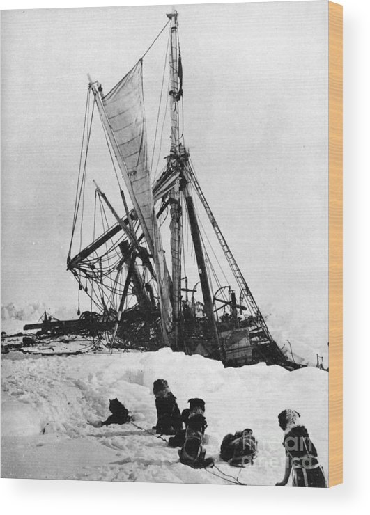 1915 Wood Print featuring the photograph Shackletons Endurance by Granger